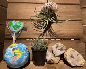 Earth Day Kit